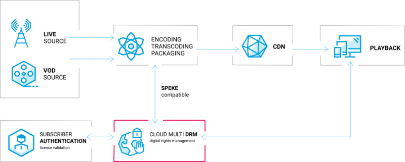 drm_workflow (1)